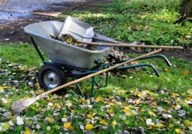 Wie Hoch Sind Die Preise Fur Gartenpflege