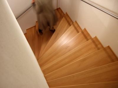 Sehr Wie neu: Treppe einfach abschleifen lassen WT64